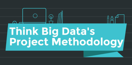 project methodology think big data